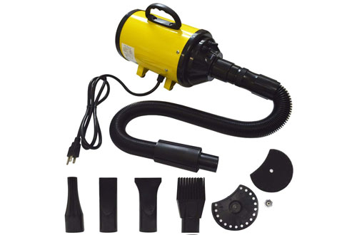Belinde Pet Hair Grooming Dryer for Dogs & Cats with 4 Nozzles 2400W
