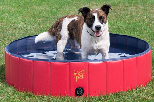 FrontPet Foldable Large Dog Pet Pool Bathing Tub