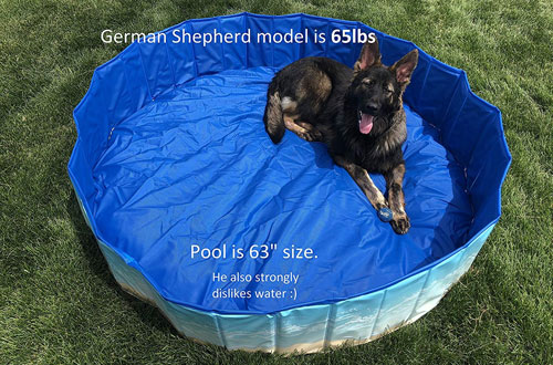 Midlee Dog Pool - Foldable & Portable Outdoor Bathing Tub