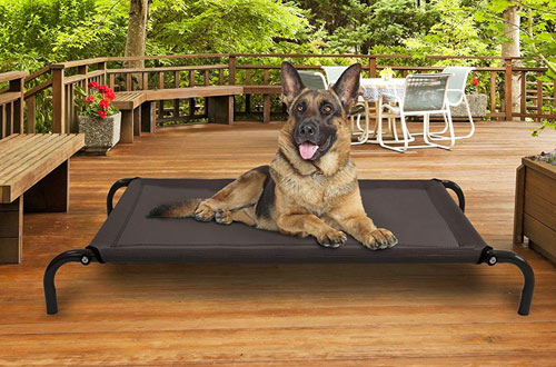 FurHaven Elevated Cot Pet Bed