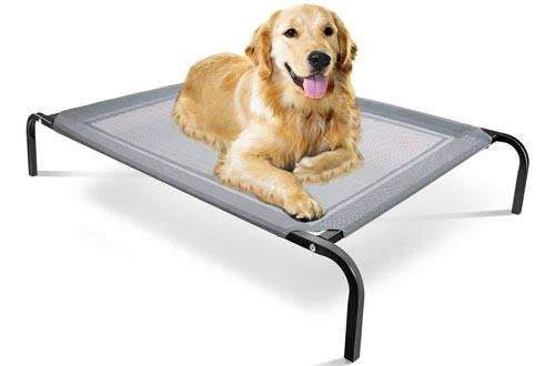 Steel-Framed Portable Elevated Pet Bed
