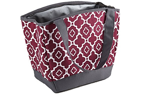 Fit & Fresh Hyannis Insulated Lunch Bag for Women