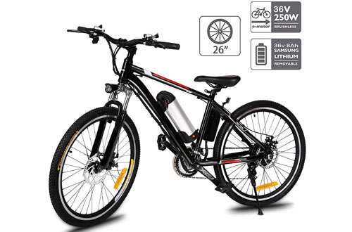 Electric Mountain Bike Removable Large Capacity Lithium-Ion Battery