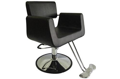 Hydraulic Comfort Styling Chair Spa Salon Beauty Equipment