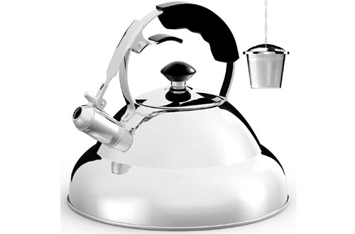 Tea Kettle - Surgical Whistling Teapot