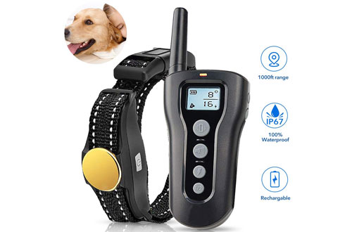 TOKEGO Remote Rechargeable Shock Collar for Small and Large Dogs