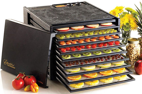 Electric Food Dehydrator with Temperature Settings