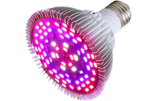 MIYA 50W Full Spectrum Grow Light Led Plant Bulb