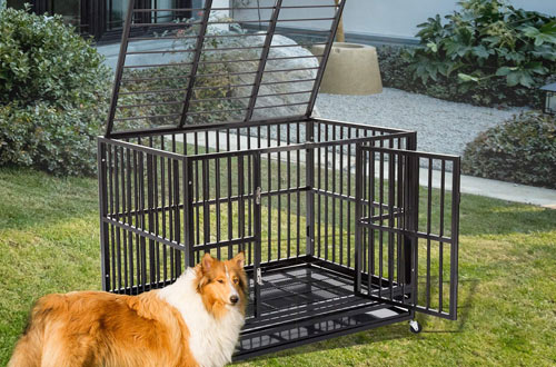 PUPZO Heavy Duty Metal Dog Crate with Wheels