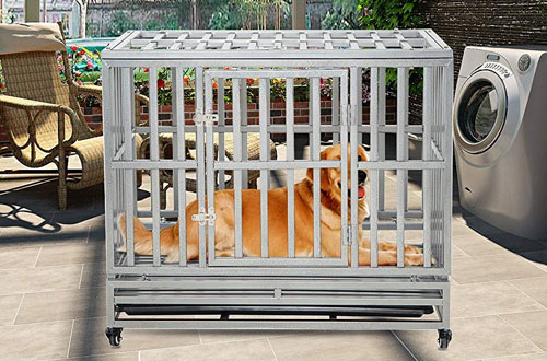 LUCKUP Heavy Duty Large Dog Metal Kennel and Dog Crate