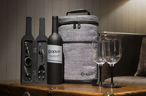 Premium Insulated Wine Carriers - Wine Tote Bag for Travel