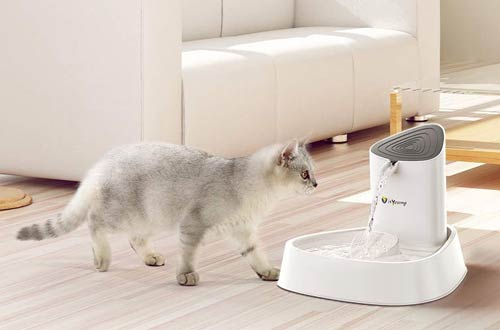isYoung Cat Drinking Fountain-Automatic Pet Water Dispenser for Cat & Dog